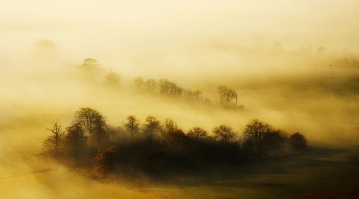chụp sương mù