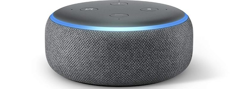 loa ECHO DOT