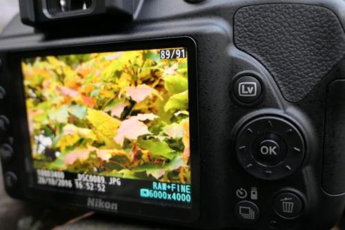Nikon D3400-4