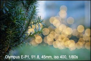 Olympus M.Zuiko 45mm f1.8-1
