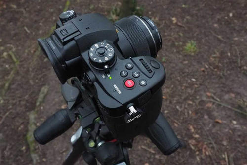 Panasonic Lumix GH5S-1