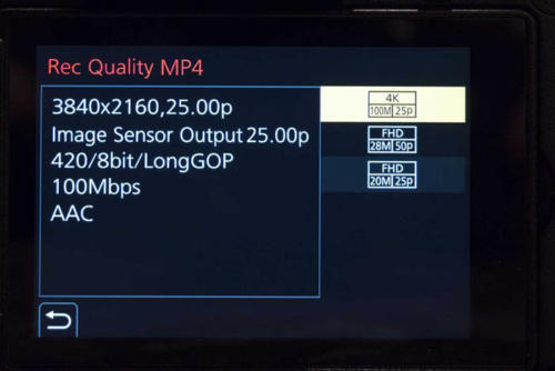 Panasonic Lumix GH5S-3