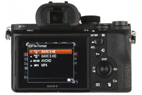 Sony Alpha A7S II-5